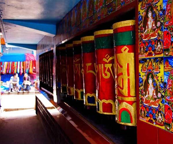 Dharamshala-Mcleodganj-Palampur-Jwalaji
